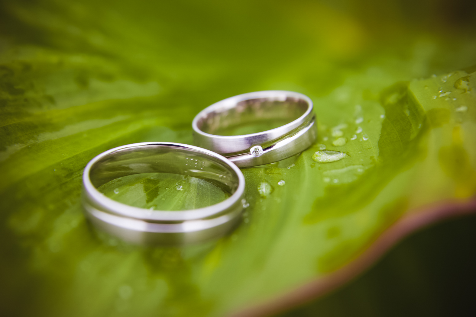 Hochzeitsfotos-Saalfeld (108)