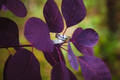 Hochzeitsfotos-Saalfeld (206)